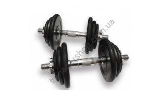 Гантели наборные Alex DB 02 31 кг