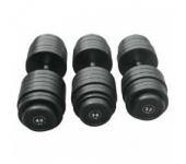 Гантельный ряд Alex FDS-09-2.5/50kg