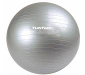 Гимнастический мяч 11TUSFU025