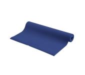 PFIYM113 Коврик для йоги ProForm (синий)